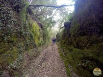vie cave pitigliano trekking_13