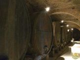 abadia monte olivetto maggiore_50