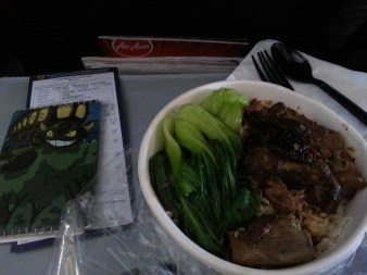 A giant bowl I bought from Bangkok airport of pork, bok choy, and tons of rice. And my Totoro covered passport!