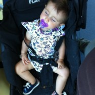 Sleeping passenger   by Paula Jarrin babygirl, barcelona, bus, igersbcn, igerscatalunya, iphoneonly, iphonesia, nofilters, passengers, tmb, ubiquography, vick,