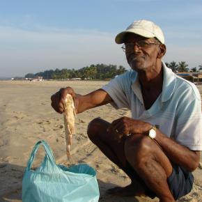 The Goan fisherman who caught just starfish