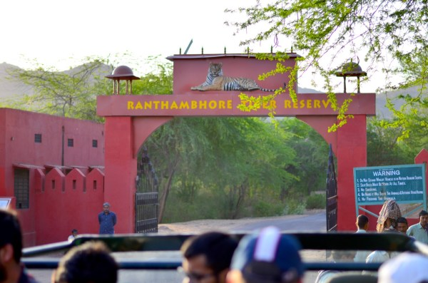 The entry to Ranthambhore... the adventure begins from this point!