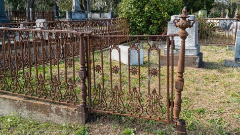 Lyre and Star Fence Gate