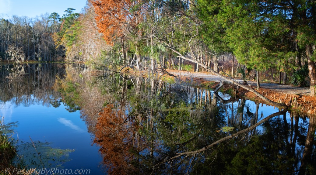 End of the Pond, Reflected