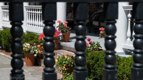 Flower Pots inside the gate