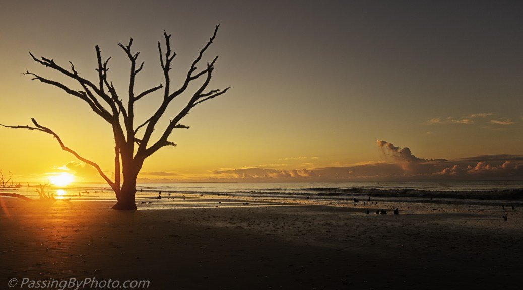 Sunrise, Botany Bay