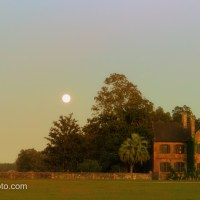Moon Rising Over Middleton Place