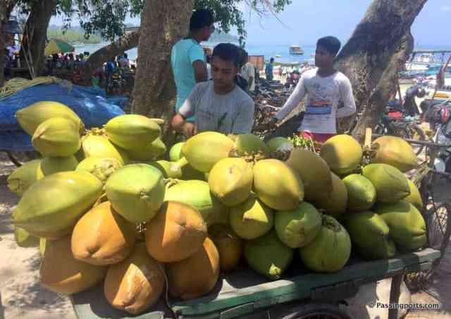 tender coconuts huge