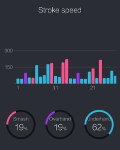 usense badminton statistiques