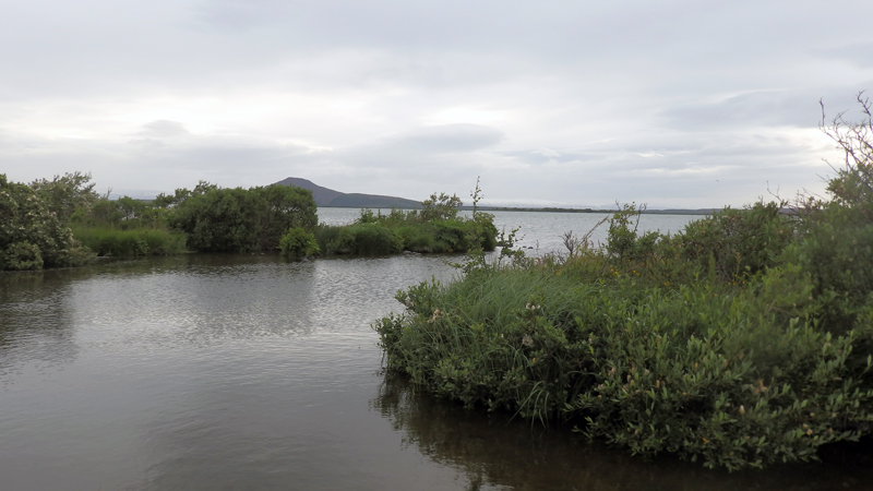 Circuit guidé en Islande, lac Myvatn