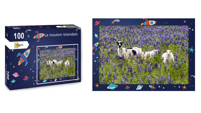 Les moutons islandais, puzzle 100 pièces, par Jean-Yves Petit