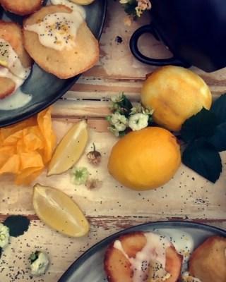 Lemon Drizzled Madeleines