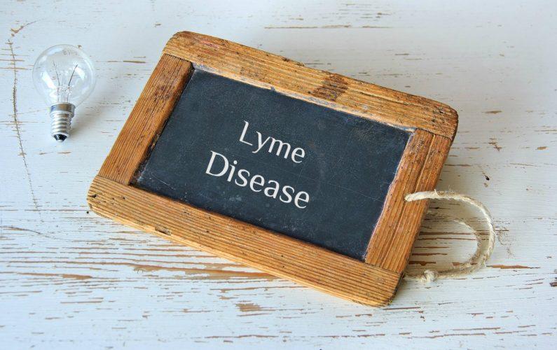 lyme disease sign