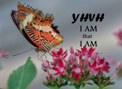25 I AM Statements of Jesus
