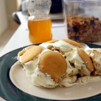 Paula Deen Banana Pudding Recipe (Perfect for ANY Occasion!)