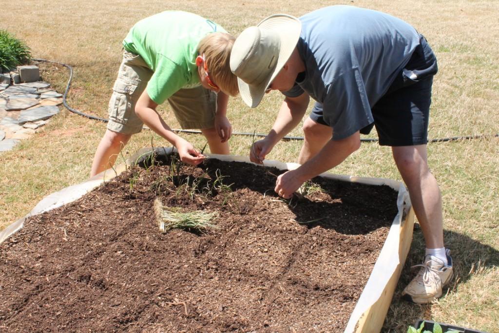Planting Seeds Square Foot Gardening