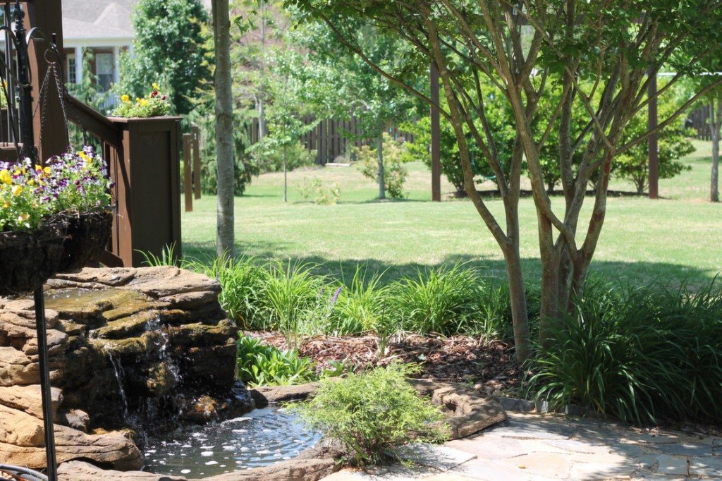 Backyard with Water Feature