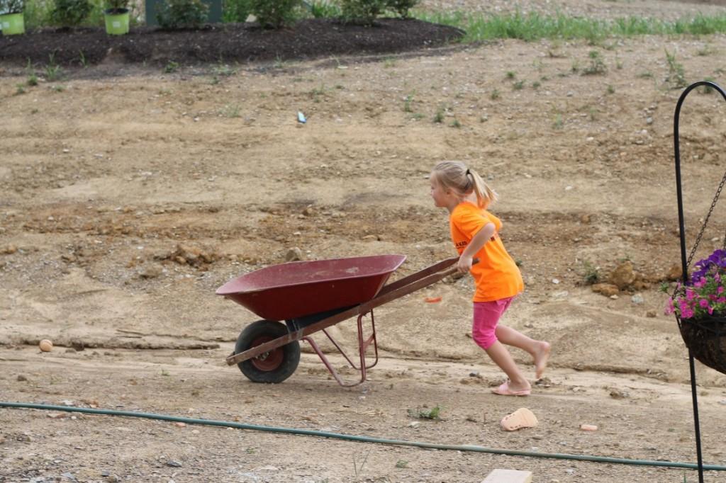 Moving Rocks for Backyard Makeover