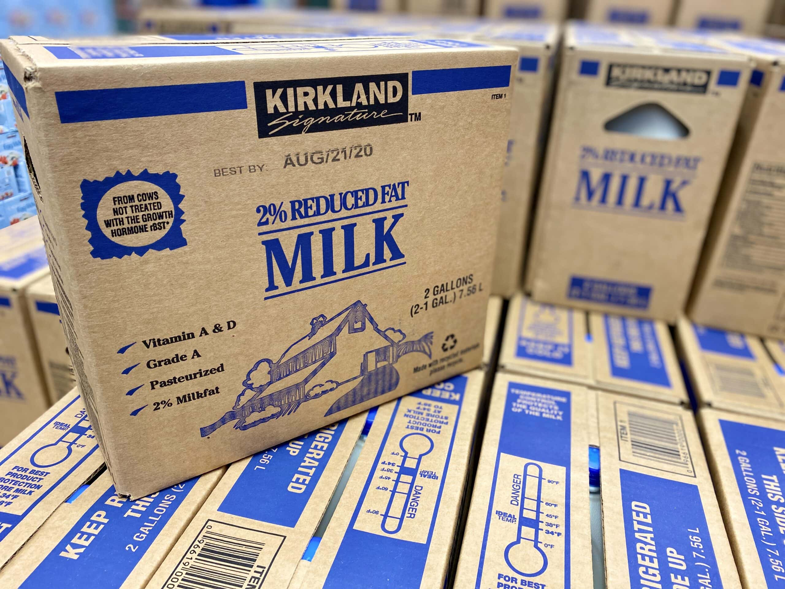 best things to buy at costco milk