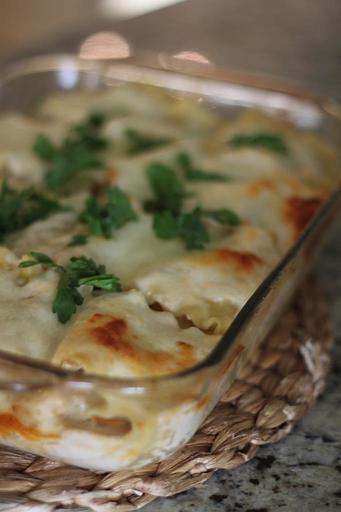 Lasagna Rollups