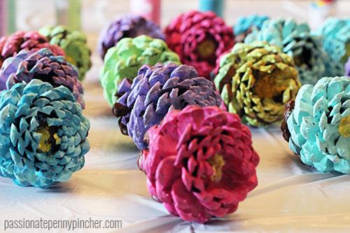 pinecones6