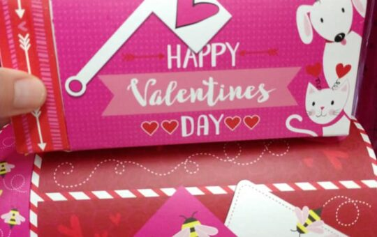 Dollar Tree Valentines