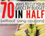 grocerybudgetinhalff5