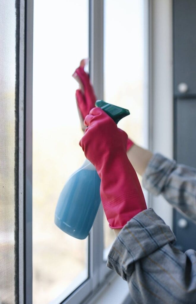 Homemade Window Cleaner Tall Image