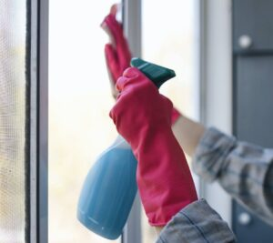Homemade Window Cleaner Wide Image