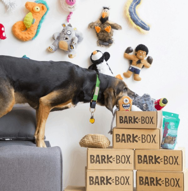 Barkbox Subscription Boxes for women