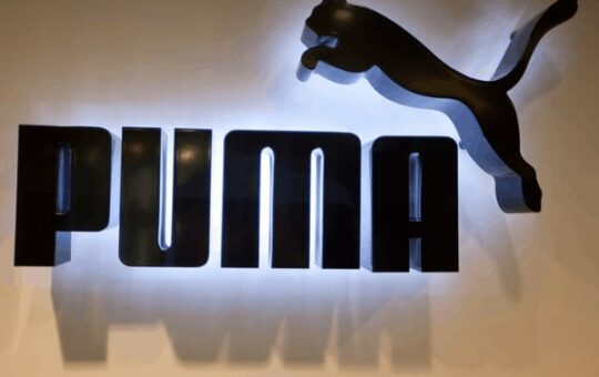 Puma Sale