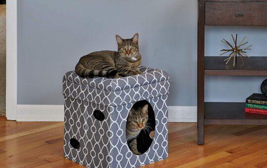Cat Condo House