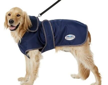 Dog Coat Sale