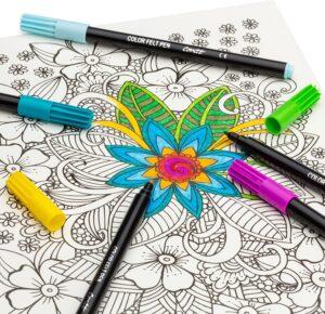 Bic Felt Pen Color Collection