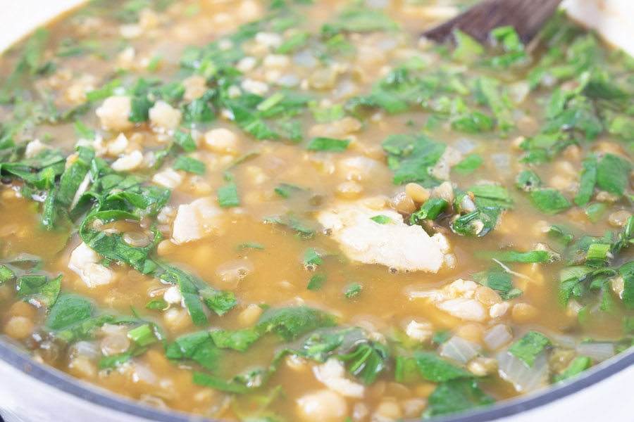 Hearty and Healthy Chicken Soup Recipe