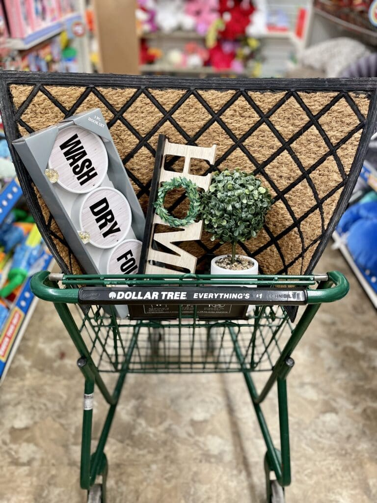 what to buy at Dollar Tree and Dollar Tree Plus
