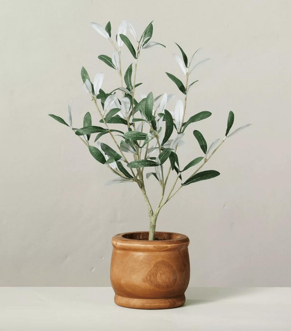 hearth & hand with magnolia