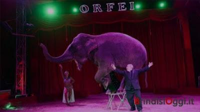 Da tre mesi bloccato a San Michele, il Circo Orfei adottato dalla comunità
