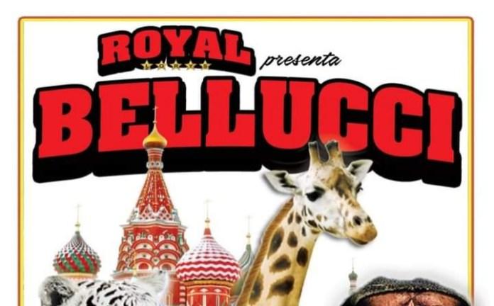 Finalmente a Foggia il Circo Royal + Bellucci