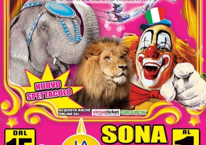 Arriva-a-Sona-il-Circo-Rolando-Orfei.-In-pista-la-donna-laser