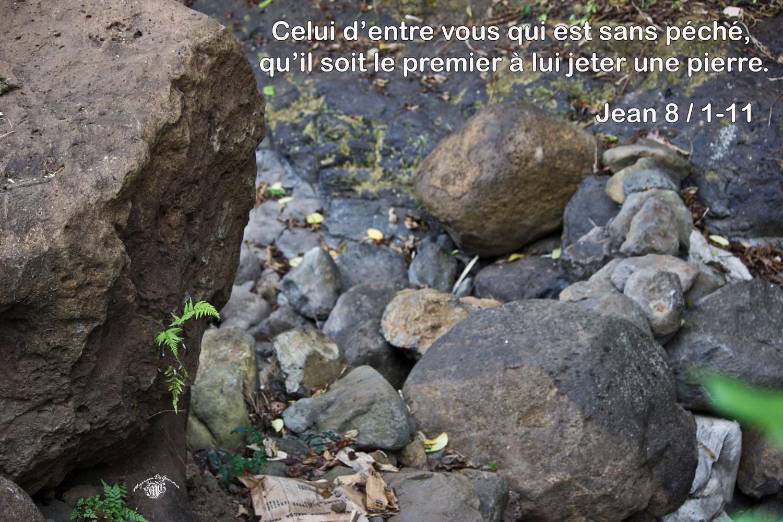 Jean 8 1 11aw