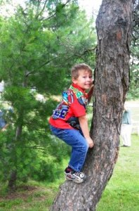 internetbrain.boy.climbing.tree