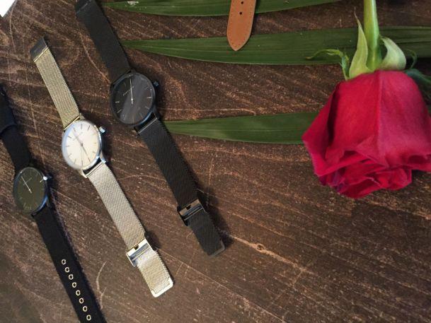 Bonvilain montre