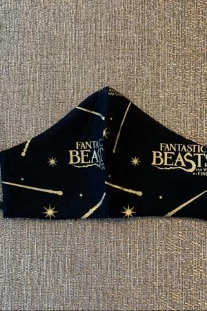 Fantastic Beast Kids Face Mask