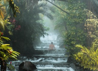 Man Surrounded by Tropical Forest and Water in Costa Rica