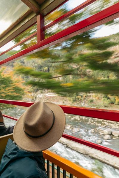creative traveler on train