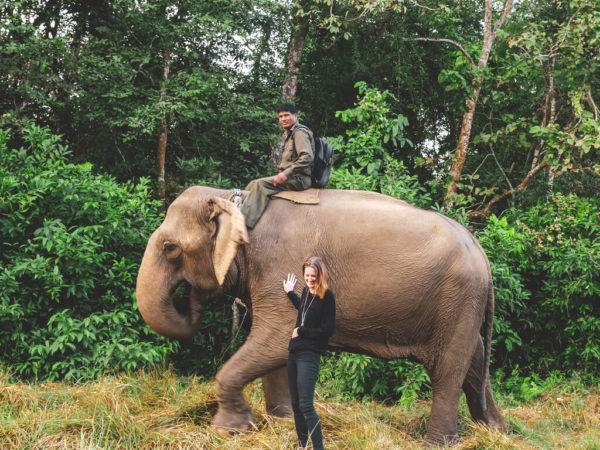 woman petting elephant