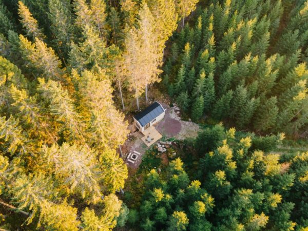 aerial view inforest cabin
