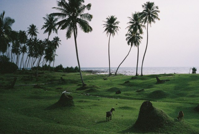 Simeulue-Indonesia-Dan-Sadgrove