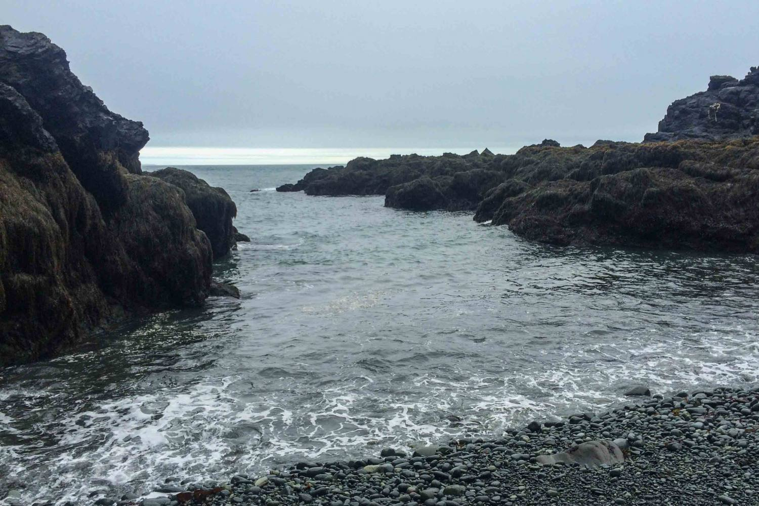 Cutler Coast in Maine is one of Ryan's favorite spots for hiking. If you're looking for some peace and quiet, you'll love it, too! Click for details on planning your hike.